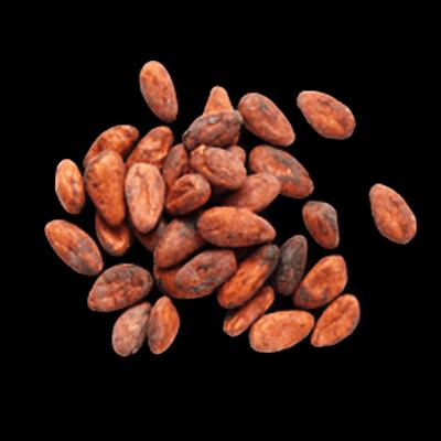 Kakao pupiņas